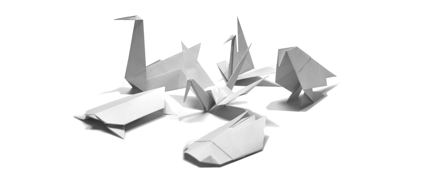 Everything About Origami - Origami Photograph
