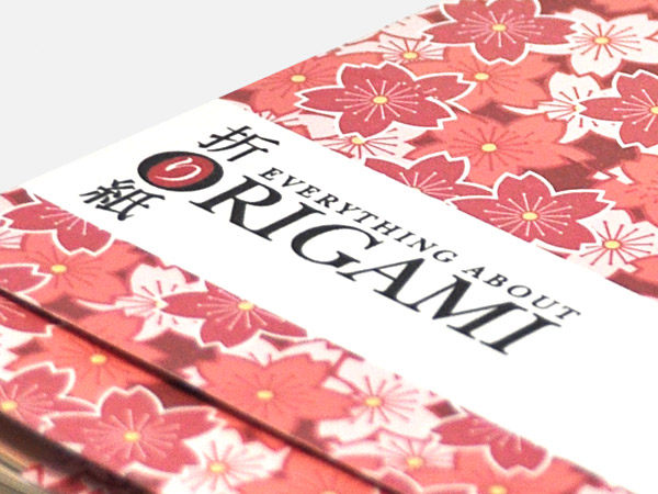 Everything About Origami Book